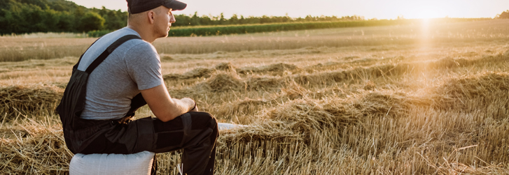 Farmer in the wheat field looking at combine harvester